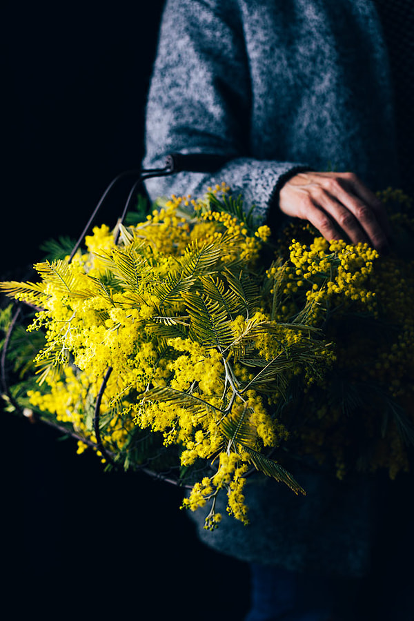 Flowers by Raquel Carmona Romero on 500px.com