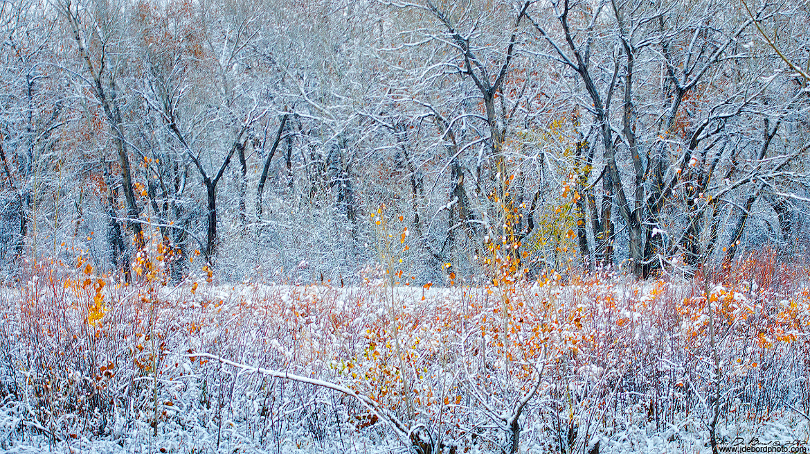 Photograph Clash Of Seasons by John De Bord Photography on 500px