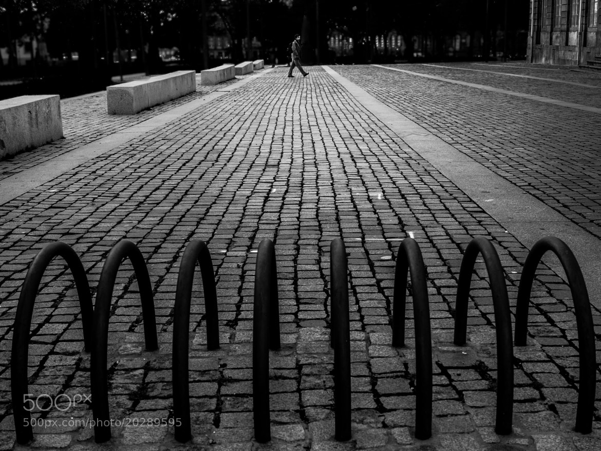 Photograph Chained Lines by Vieira da Silva on 500px