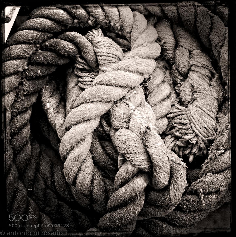 Photograph Tied IV by Antonio M. Rosario on 500px