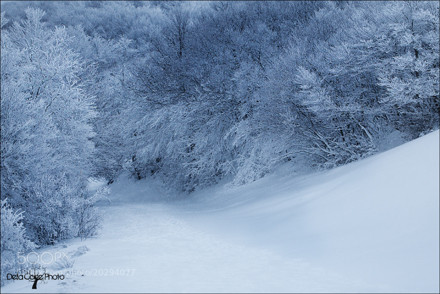 Photograph White Silence by Alfonso  Della Corte  on 500px