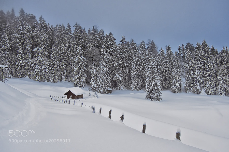 Photograph winter by Sandra Löber on 500px