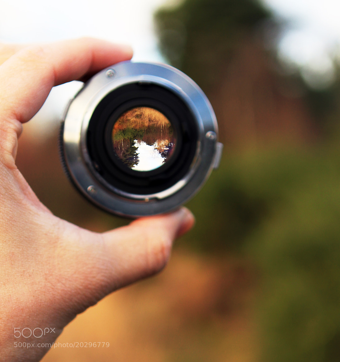 Photograph Through the lens by Nick Stuckey on 500px