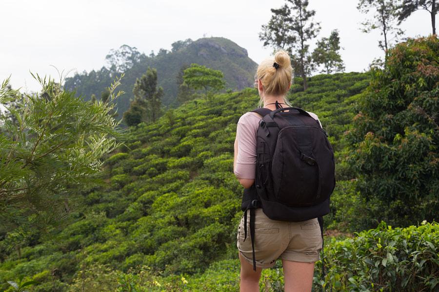 Female tourist enjoying beautiful nature of tea plantations, Sri Lanka. by Matej Kastelic on 500px.com