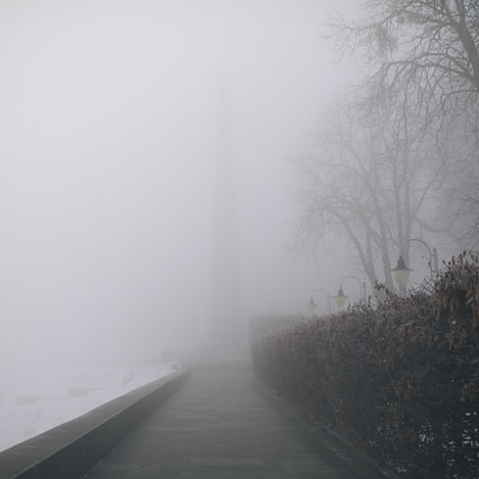 foggy story