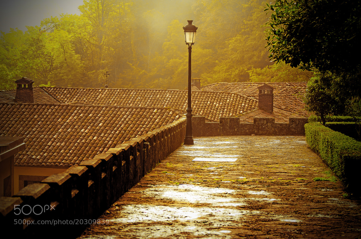 Photograph Covadonga by Omera 28 on 500px