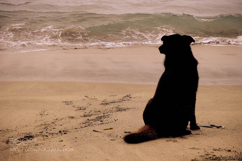 Photograph Me and the sea! by Conceição Dias on 500px
