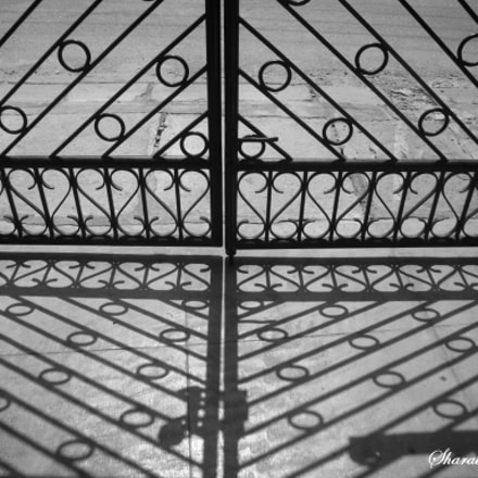 STILL LIFE : THE GATE, Panasonic DMC-FX01