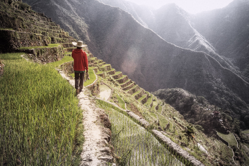 Photograph Rice field of Batad by Matthieu G. on 500px