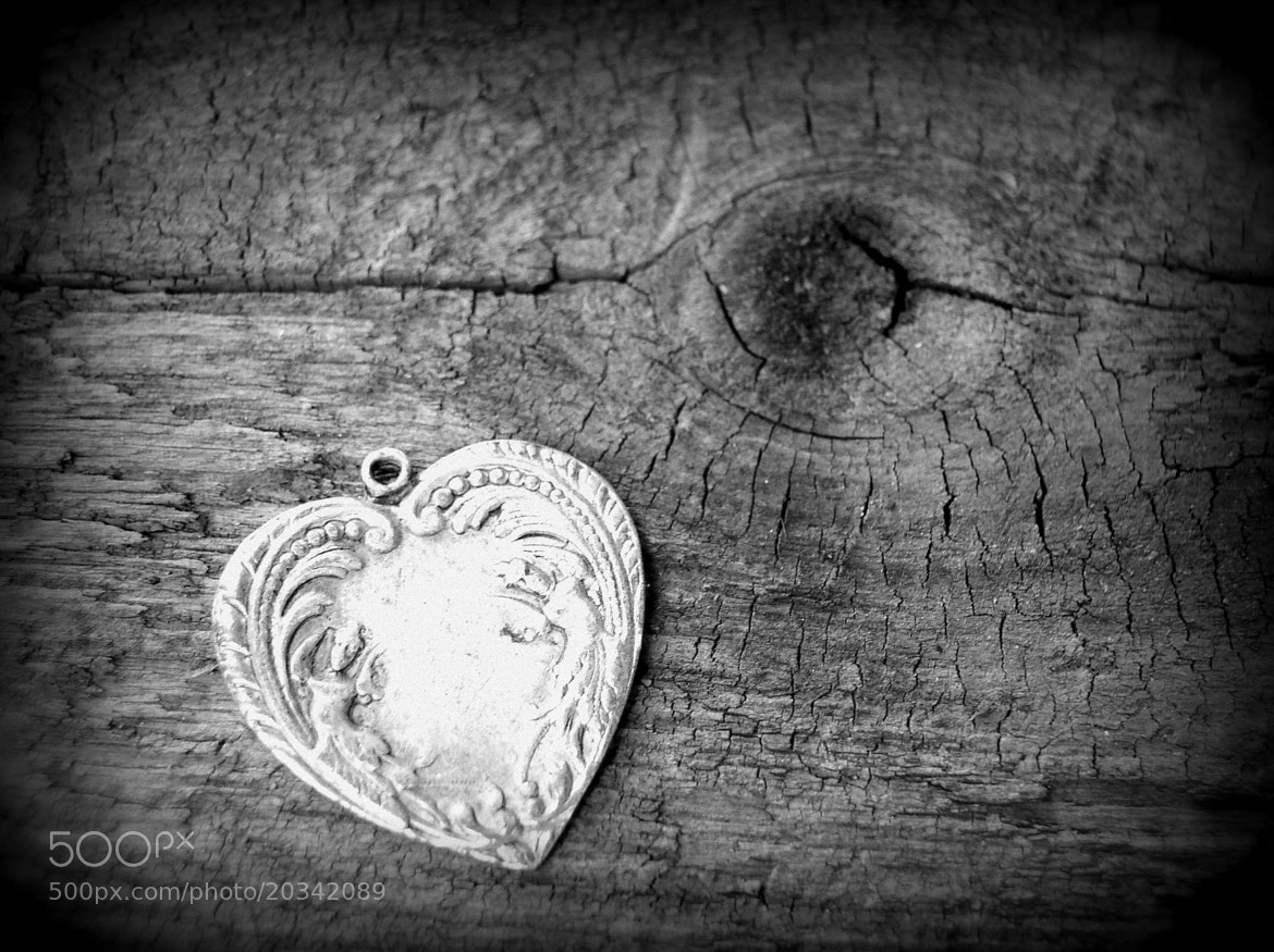Photograph Forgotten Heart by Darcy Finden on 500px
