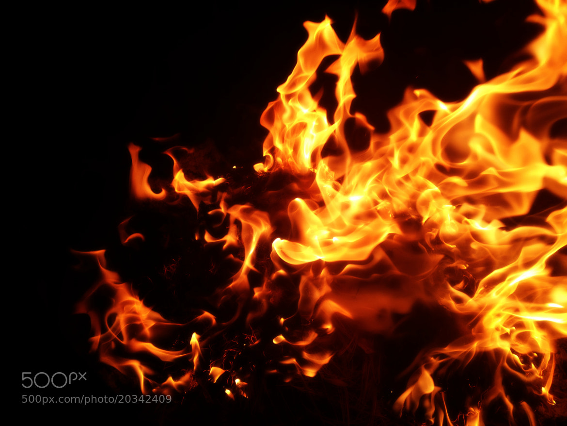 Photograph Dancing Flames by Darcy Finden on 500px