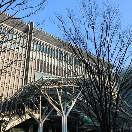 hakata station, Canon EOS KISS X8I, Canon EF-S 18-55mm f/3.5-5.6 IS STM