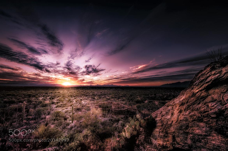 Photograph Another Desert Sunset by Steve Steinmetz on 500px