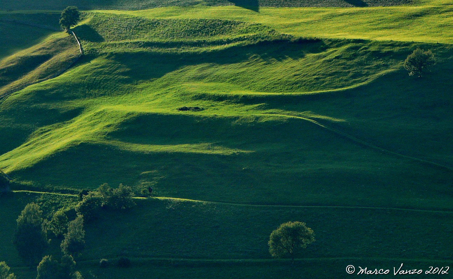 Photograph green by Marco Vanzo on 500px