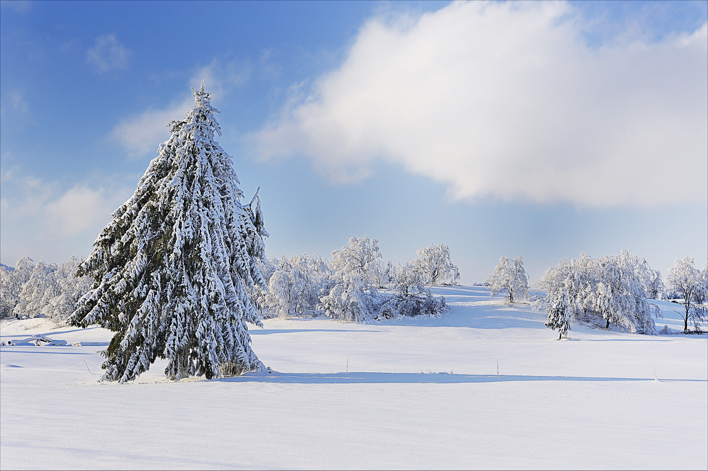 Photograph snow by mauro maione on 500px