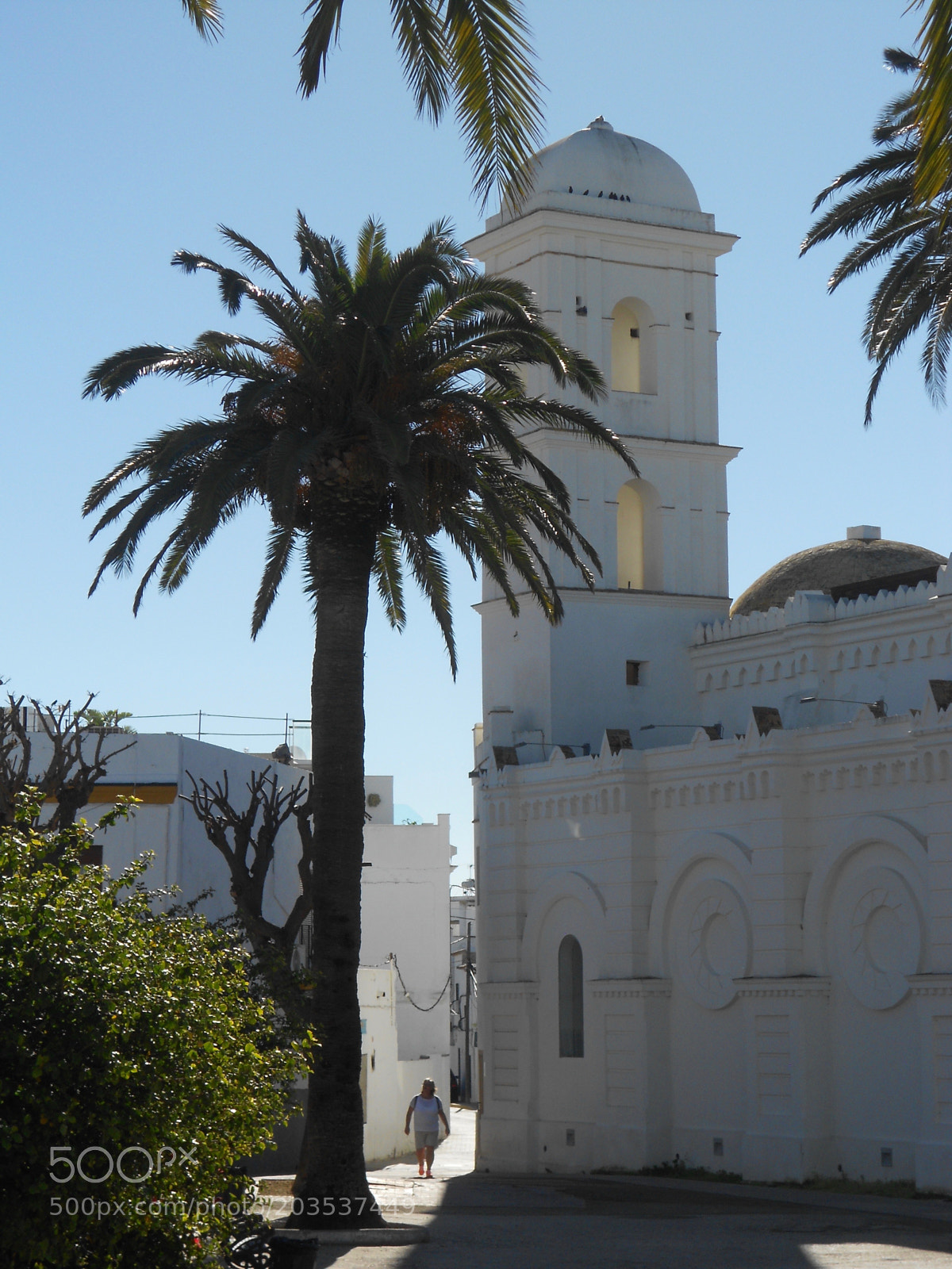 """Nikon COOLPIX S4150 sample photo. """"Palm and church tower"""" photography"""