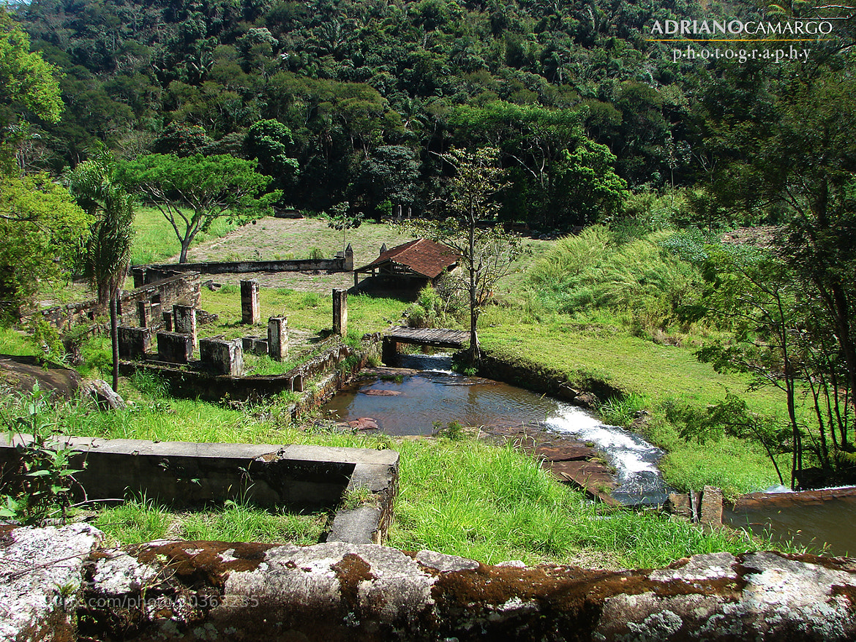 Photograph Coffe's Farm by José Adriano Camargo on 500px