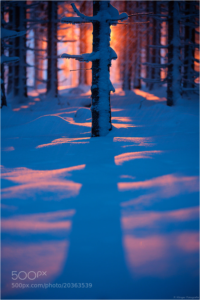 Photograph Light cuts the dark by Philip Klinger on 500px
