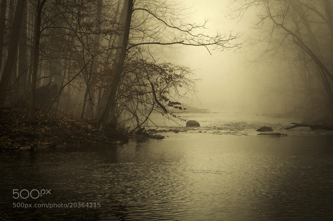 Photograph Into the Mist by Jim Molloy on 500px