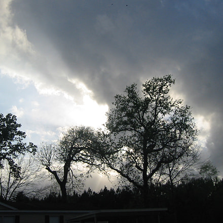 Trees and Clouds at, Canon POWERSHOT S330