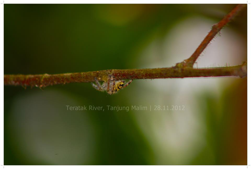 Photograph 6 by Muhammad Adiel on 500px