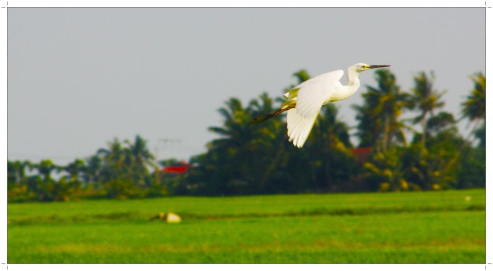 Photograph 12 by Muhammad Adiel on 500px