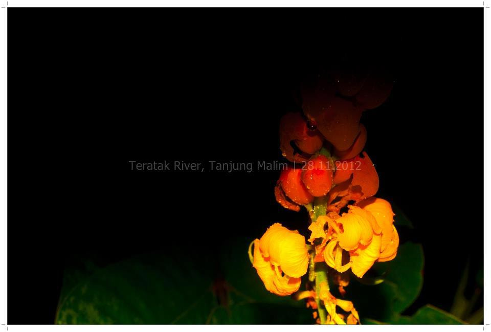 Photograph 11 by Muhammad Adiel on 500px