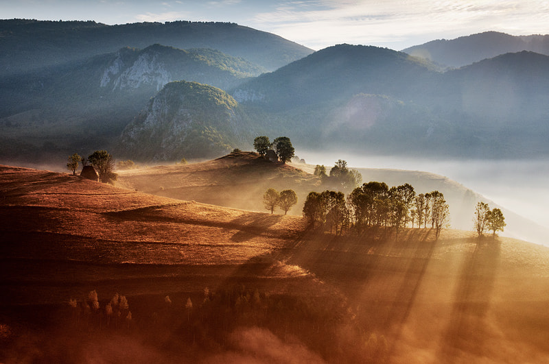 Photograph Prelude to autumn by Cornel Pufan on 500px