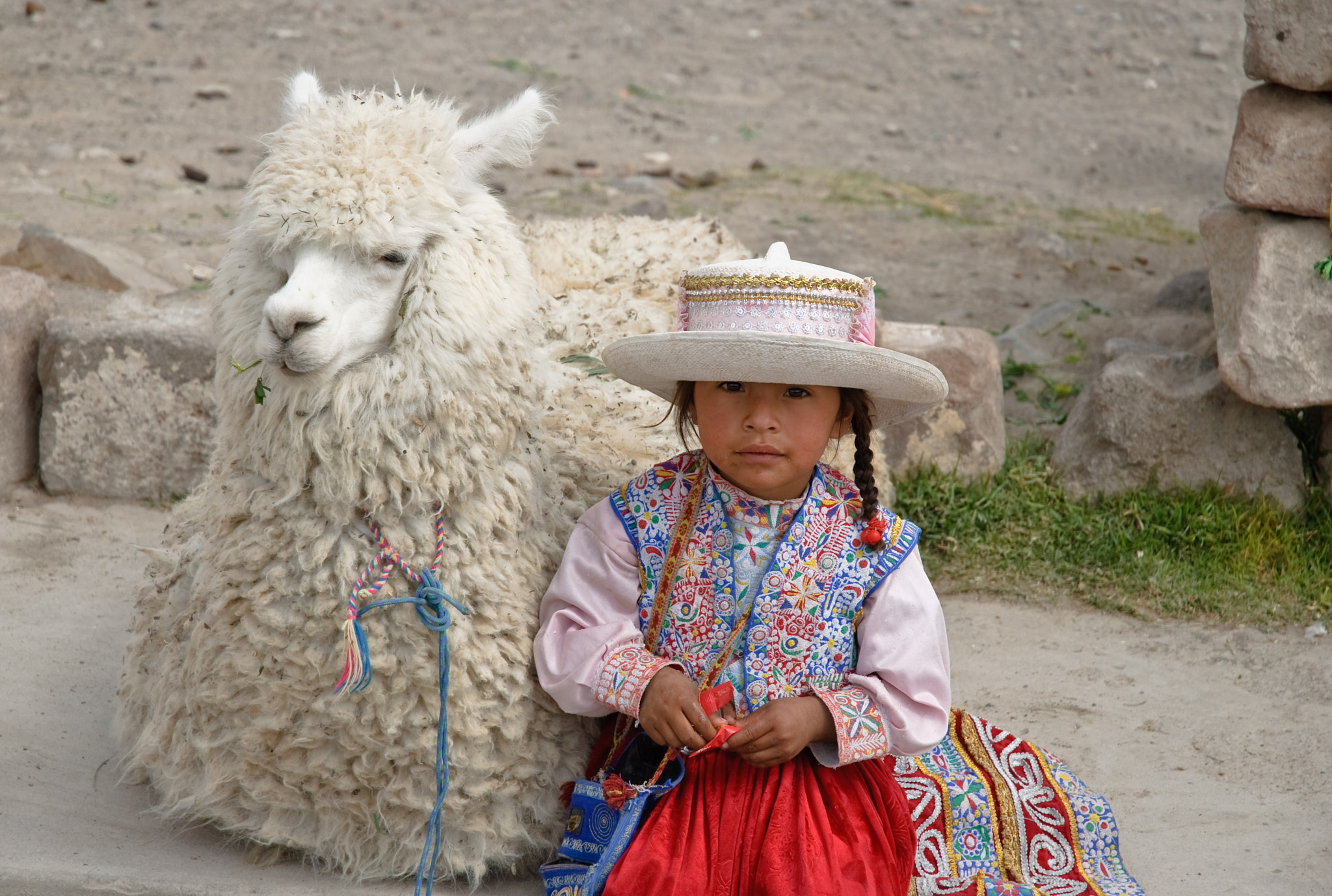 Photograph Chivay, Peru - Peruvian little girl in traditional clothing with alpaca by David Min on 500px