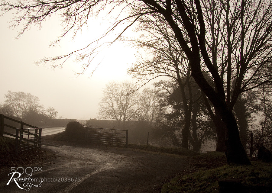 Photograph The Road to Dryslwyn Castle by Roughley Originals on 500px