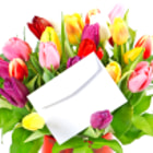 colorful bouquet of fresh tulips with white card