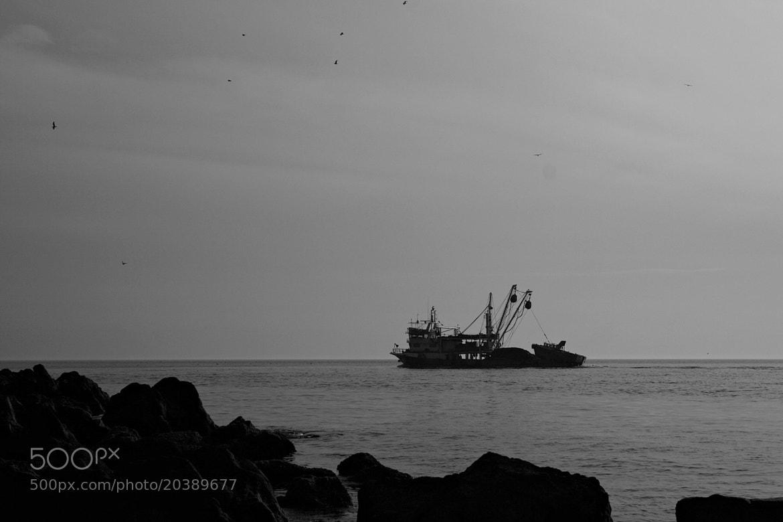 Photograph Old Fishermen by Sibel Sedefoğlu on 500px