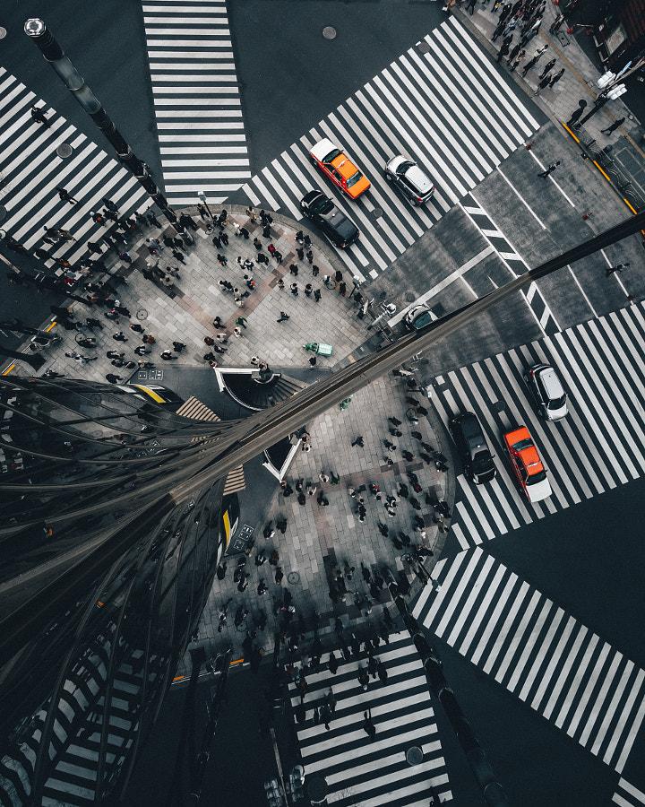 Reflection by Yoshiro Ishii on 500px.com