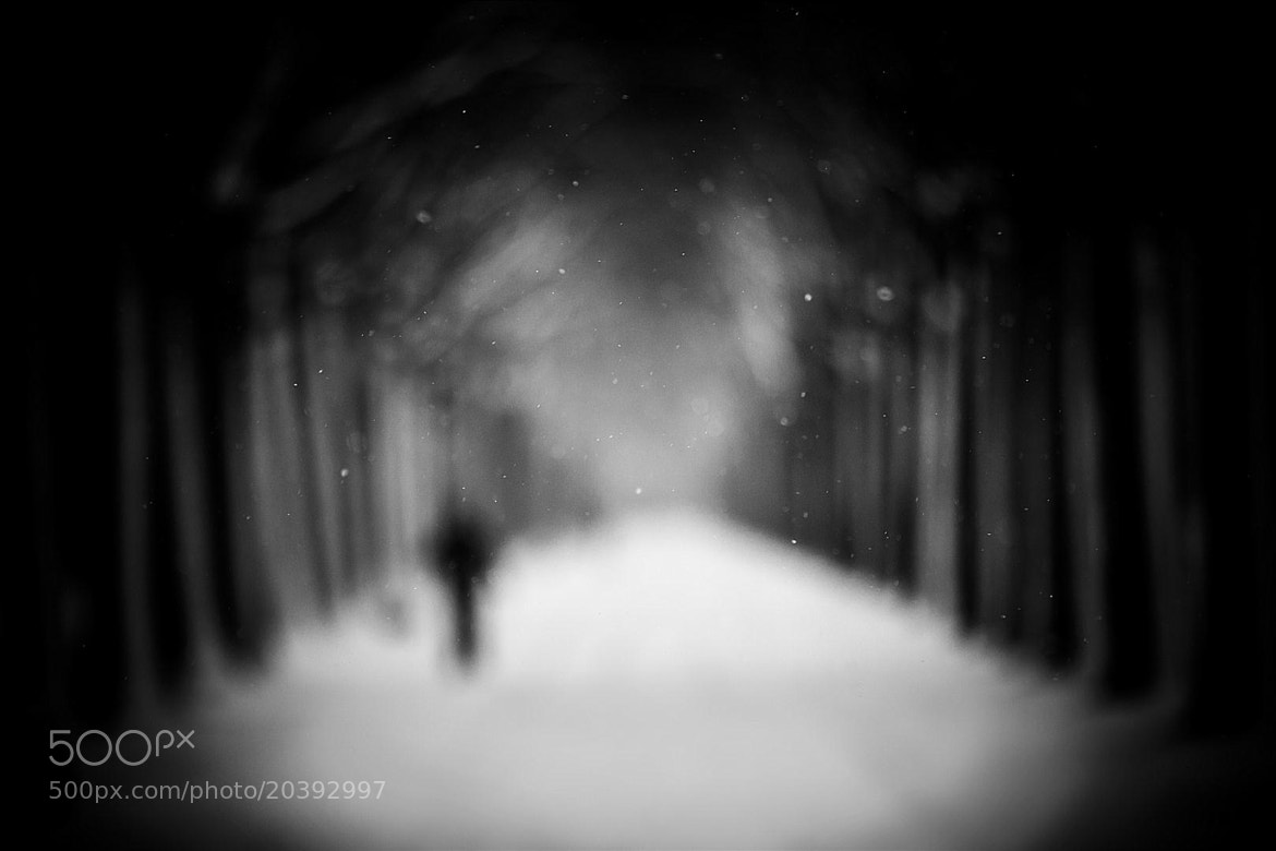 Photograph Cold way home by Ronny Engelmann on 500px