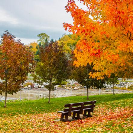 Autumn at l'Île Verte