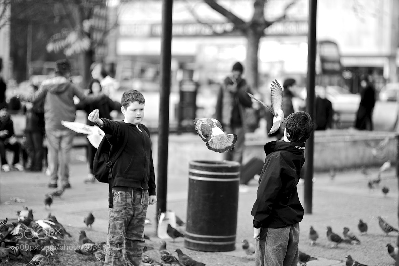 Photograph Bird Catchers by James Johnson on 500px