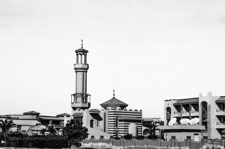 Photograph Untitled by Sherif Abdoush on 500px