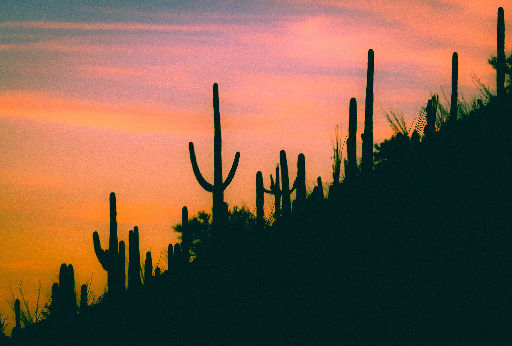 Photograph Gates Pass, Tucson by Dave Dunmyre on 500px