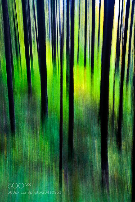 Photograph Brush Strokes by Jordan Ek on 500px