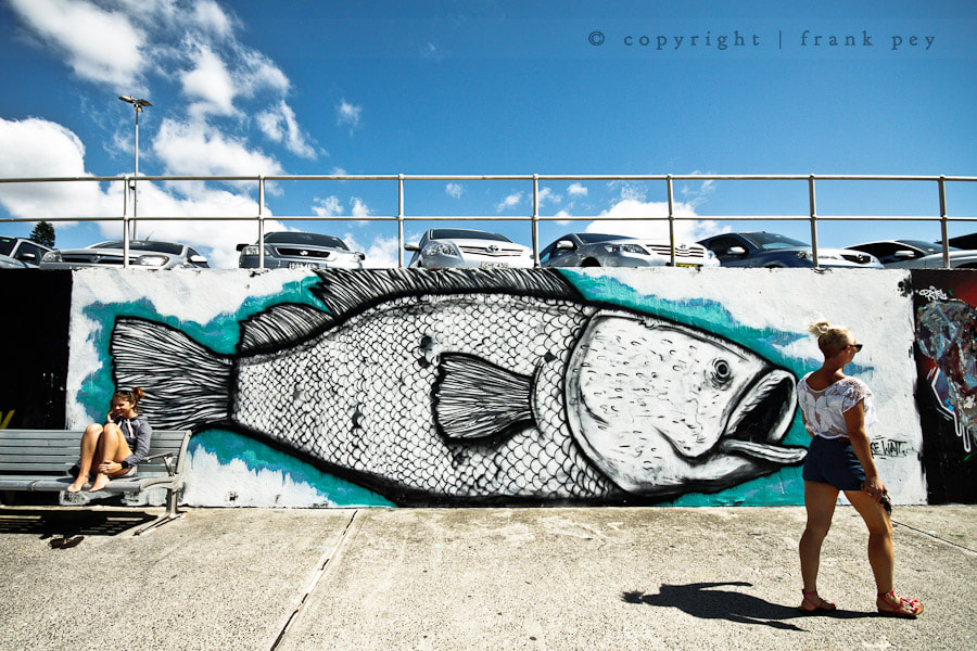 Photograph Monster Fish by Frank Pey on 500px