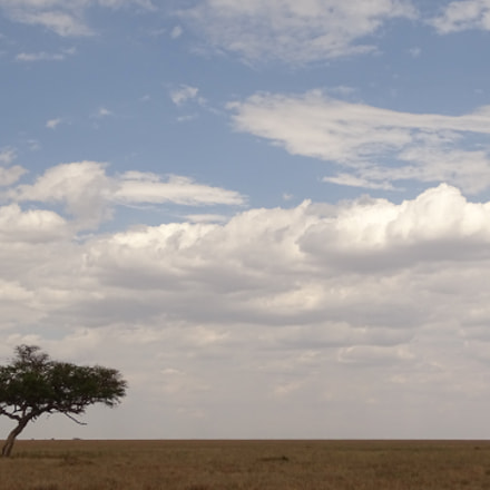 landscape - central serengeti, Sony DSC-HX400V, Sony 24-210mm F2.8-6.3