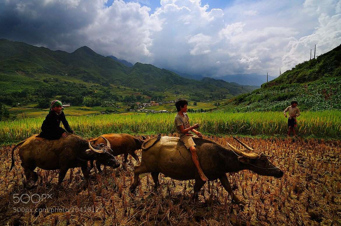 Photograph Life in sapa by Nutthavood Punpeng on 500px
