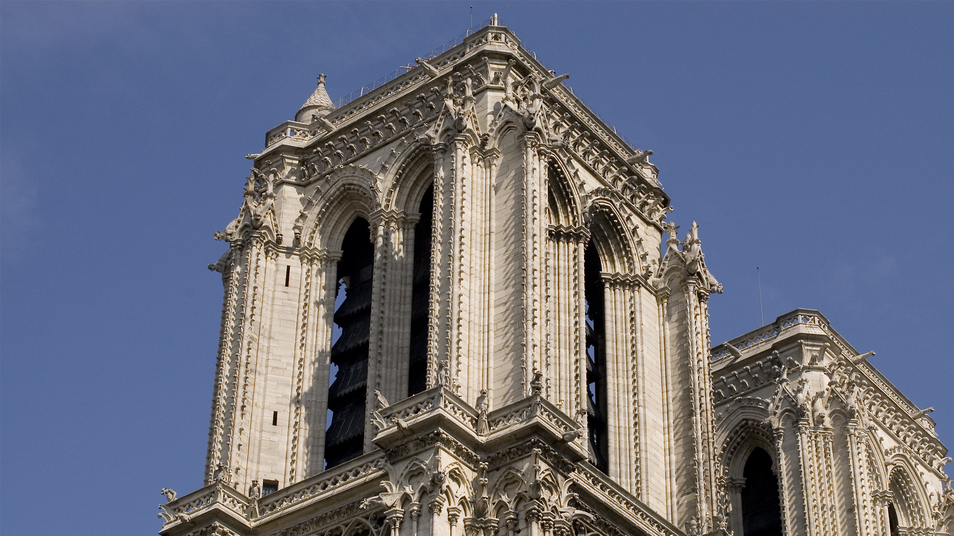 Photograph Notre Dame by Sven Savic on 500px