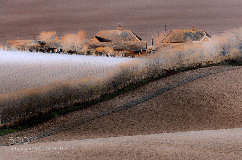 Photograph Zorro by Pawel Niktos on 500px
