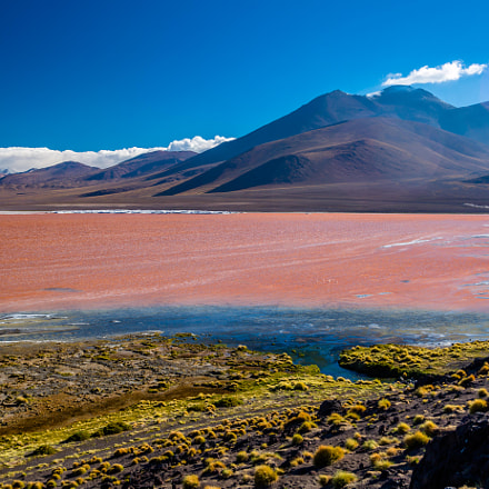 Red Lake Potosi Uyuni, Canon EOS 5D MARK III, Tamron SP AF 17-35mm f/2.8-4 Di LD Aspherical IF