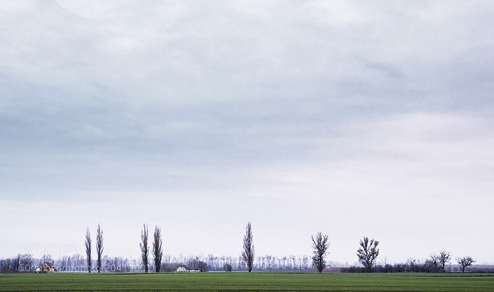 Photograph Landscape minimal by F Levente on 500px