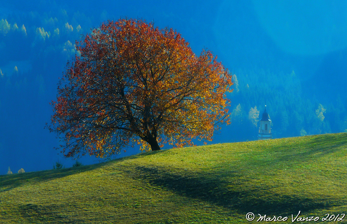 Photograph autumn  by Marco Vanzo on 500px
