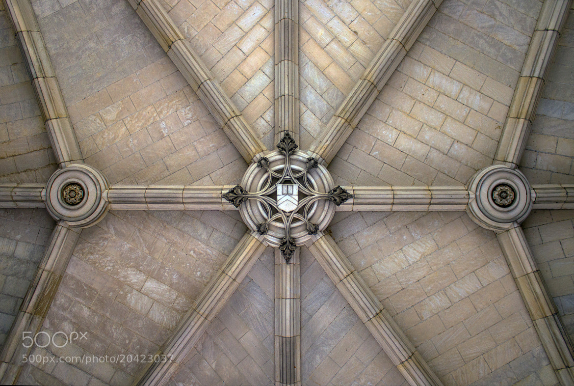 Photograph angles by Glenn DiPaola on 500px