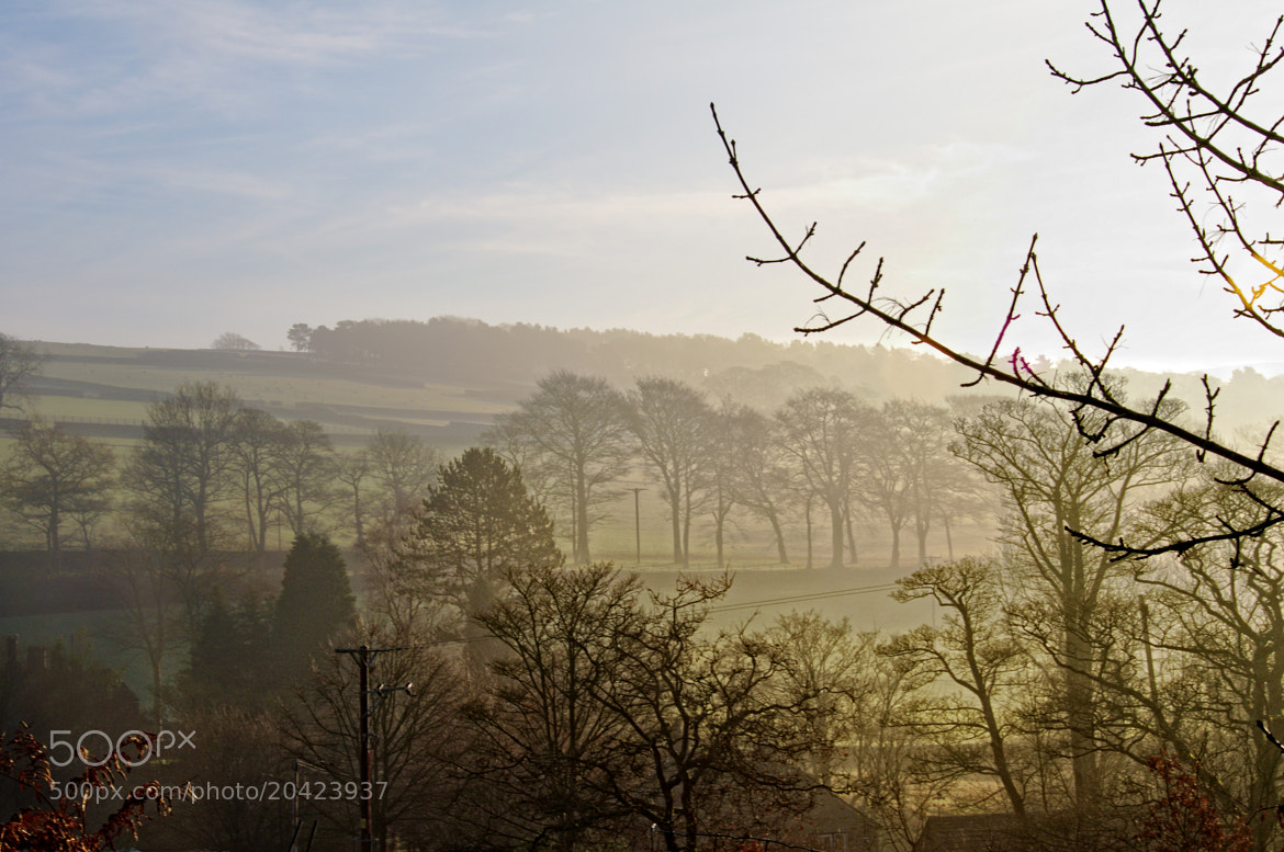 Photograph Morning fog. by Rolde  on 500px