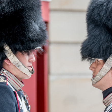 Changing of the guard, Canon EOS 70D, Tamron SP 70-300mm f/4.0-5.6 Di VC USD